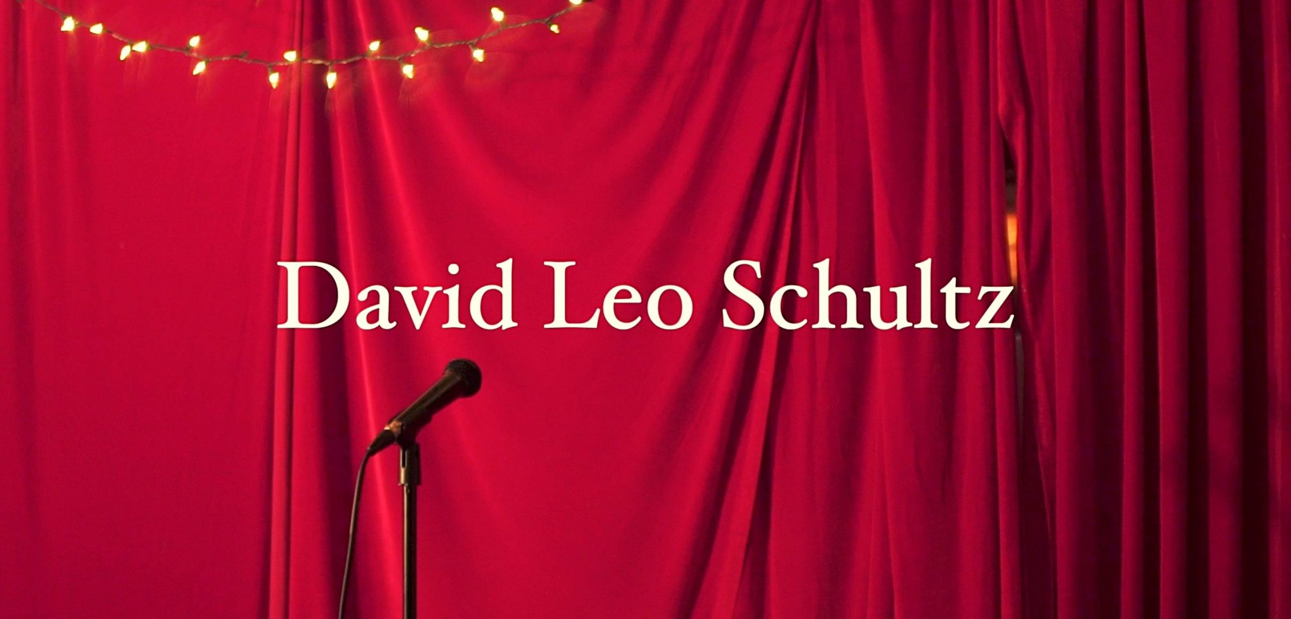 Logo for David Leo Schultz